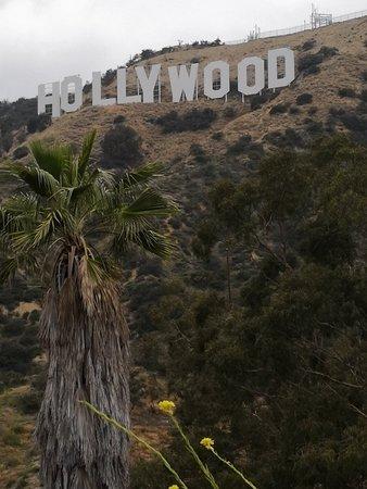 Hollywood Sign Φωτογραφία