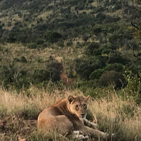 Mkuze Falls game reserve: photo5.jpg