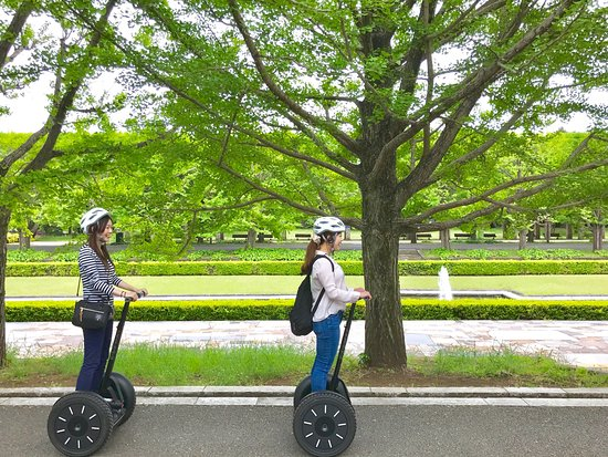 Segway Guided Tours in National Showa Memorial Park: 新緑のイチョウ並木もおすすめです。