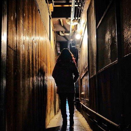 Pontocho: The bright and dark alley of Pontochō