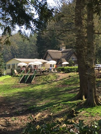 Shearwater Lake Tearooms