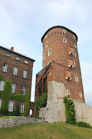 Βασιλικό Κάστρο Κρακοβίας: Torre del Castillo