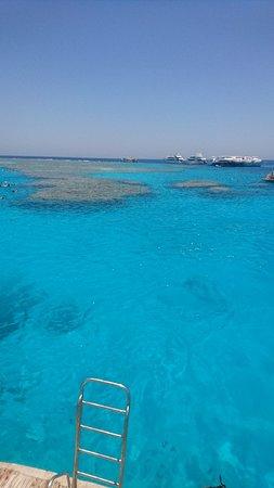 Giftun Islands Φωτογραφία