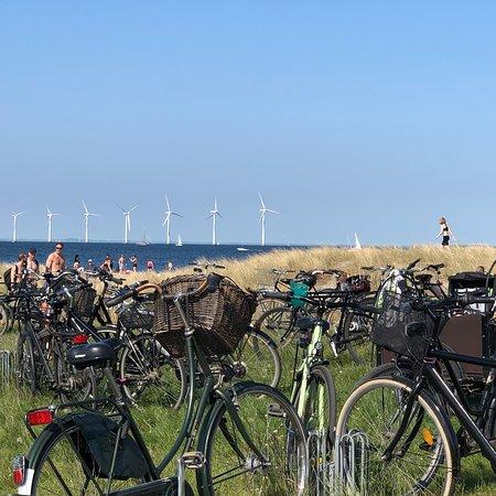 Amager Strandpark Φωτογραφία