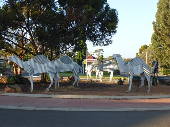 Norseman Hotel: Camel Train near Pub