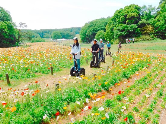 Segway Nature Exprience Tour In Shinrin Park