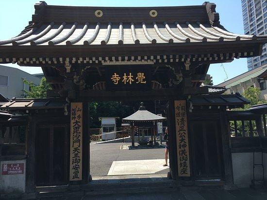 Kakurin-ji Temple (Seishoko): 山門の感じ