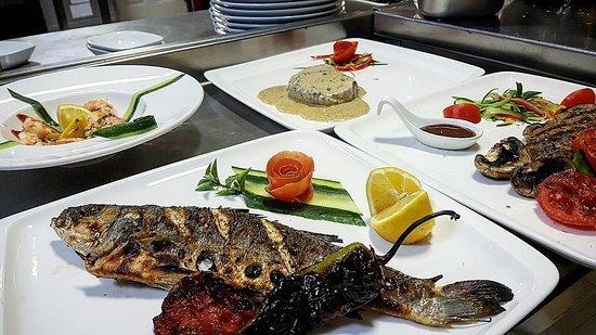 Lefke, Cyprus: Joya Bar and Bistro