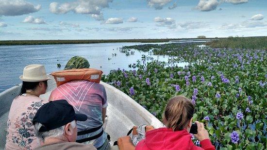 San Ignacio, Argentina: Excursión en Esteros del Ibera