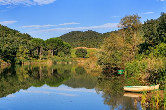 La Londe Les Maures, France: getlstd_property_photo