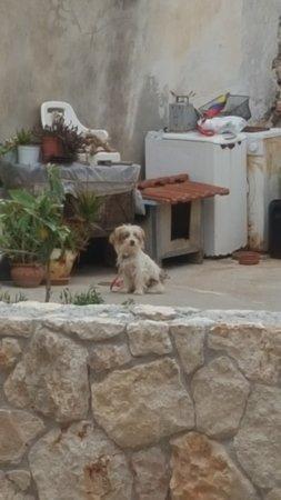 Gerani, اليونان: 20180519_164435_large.jpg