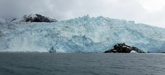 Kenai Fjords National Park Cruise from Seward: Aialik Glacier