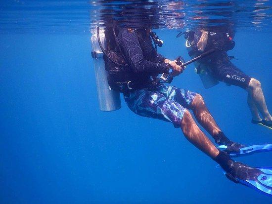 Quiver Dive Team Photo