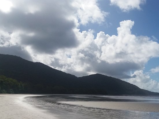 Daintree Rainforest, Cape Tribulation, Mossman Gorge in a day: Cape Tribulation