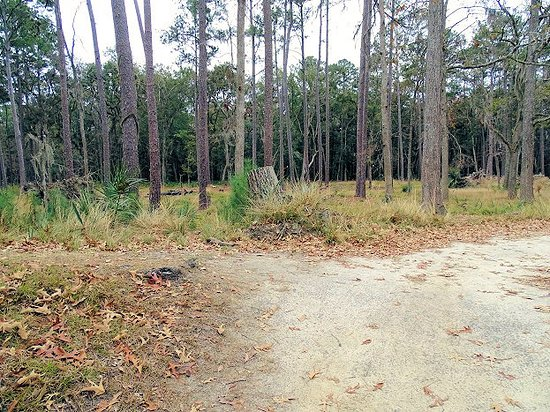 Fort McAllister State Park: sally's port supply wagon access