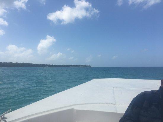 Saona Island: Lancha rápida