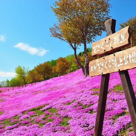 Takinoue-cho, Nhật Bản: photo0.jpg