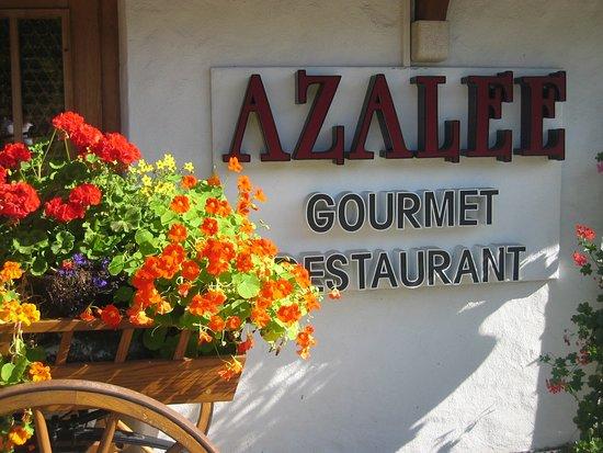 Foto de Restaurant Azalée, Schonried: Details - Tripadvisor