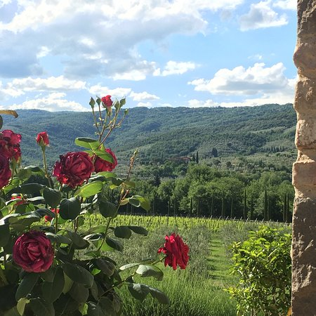 Casa Portagioia - Tuscany Bed and Breakfast : photo2.jpg