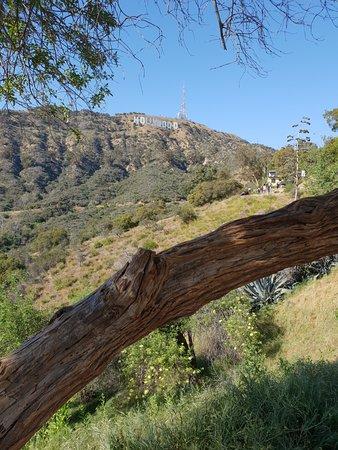 Hollywood Sign: Nähe Lake Hollywood Park