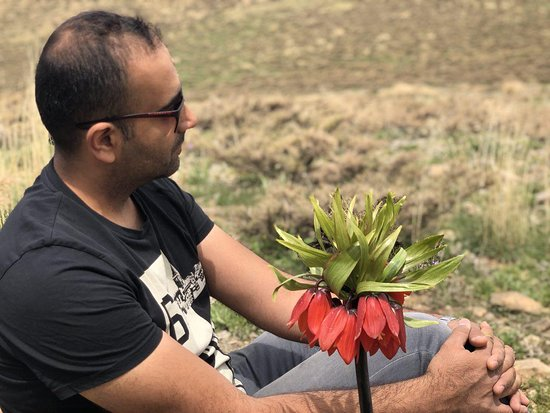 Khansar, Ιράν: me and lovely inverted tulip