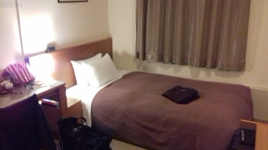 Candeo Hotels Ueno-Park : small ,but better than some