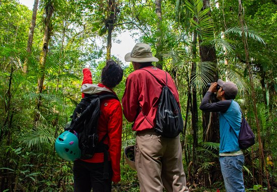Amazonia Expeditions' Tahuayo Lodge : Explore with your private guide