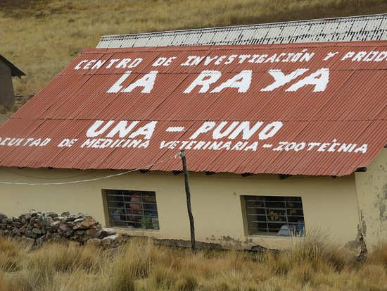 Puno Region, Peru: La Raya mountain pass