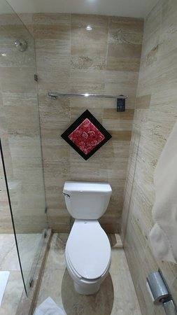 Grand Oasis Palm: Toilet in the room