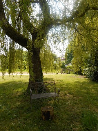 Llanover, UK: Under the willow tree