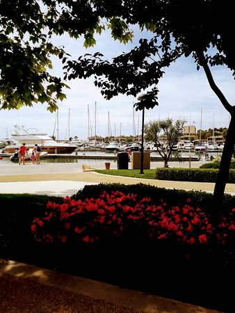 Macaroni Italian Trattoria: Ourr view for lunch