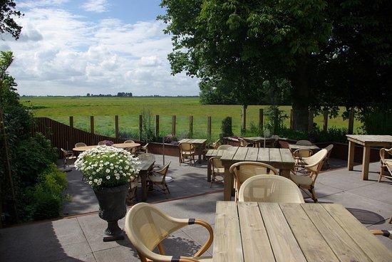 Weidum, Belanda: terras op het zuid-westen