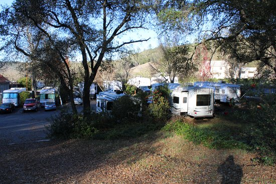 Gold Strike Village RV and Campground: Park Grounds