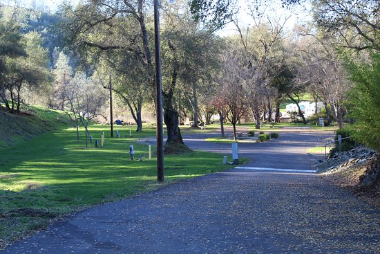 Gold Strike Village RV and Campground: Group Camping and tent camping area