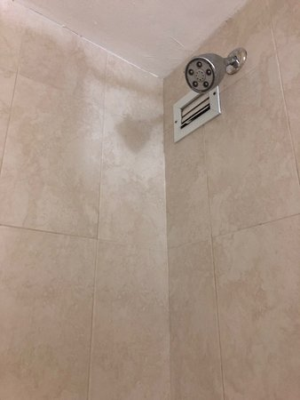Ramada Plaza by Wyndham Marco Polo Beach Resort: What is the louver next to the shower head?