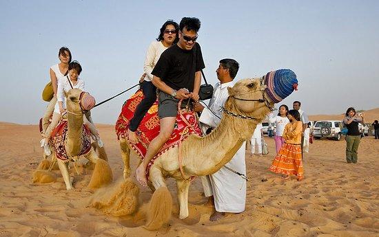 Agadir Discovery