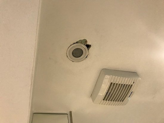Royal Eagle Hotel: Bathroom ceiling