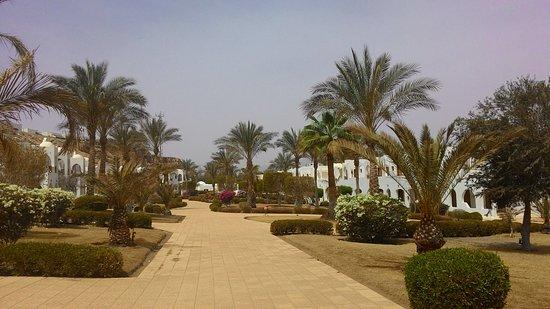 Royal Holiday Beach Resort & Casino: Дорожки