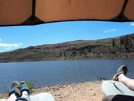Bilde fra Carp Gran Canaria