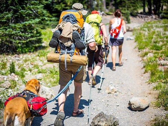 Bend, OR: Hiking at Green lakes