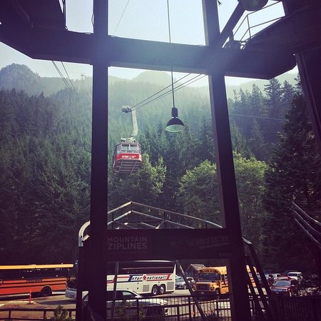 Grouse Mountain Ziplines North Vancouver
