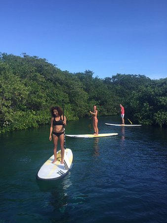 Compas SUP Club: Enjoy paddleboarding in a magical cenote with mangrove