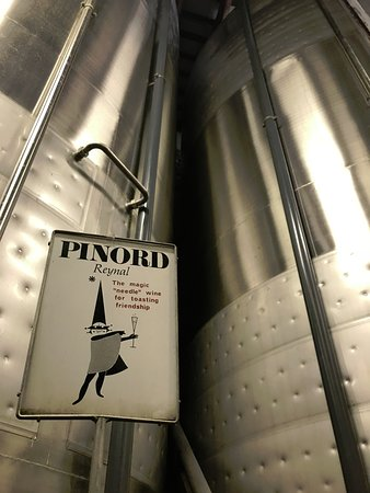 Private Priorat Wine Tour from Barcelona: Behind the scenes at Pinord