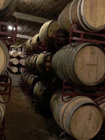 Private Priorat Wine Tour from Barcelona: A sea of barrels at Pinord