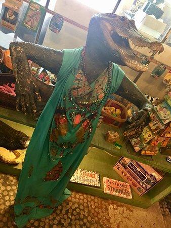 Abita Springs, LA: Chic gator styling
