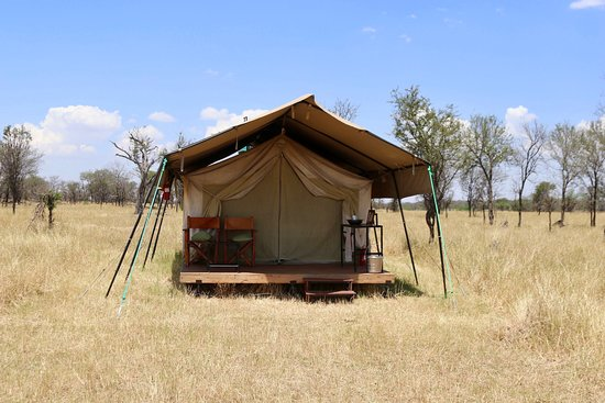 Serengeti Migration Camp: Our tent.