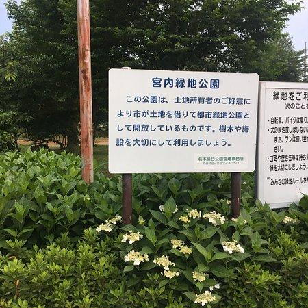Miyauchi Ryokuchi Park