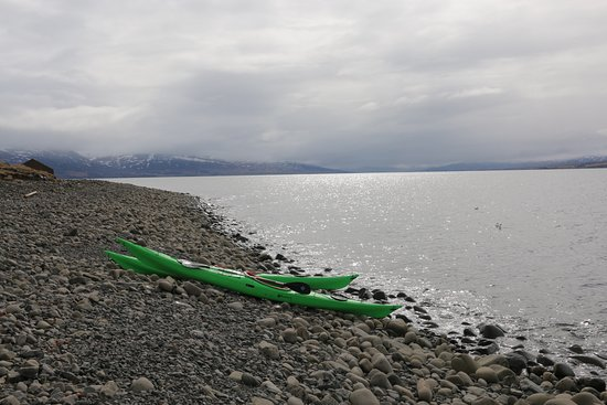 Grenivik, Iceland: Time for some dried fish