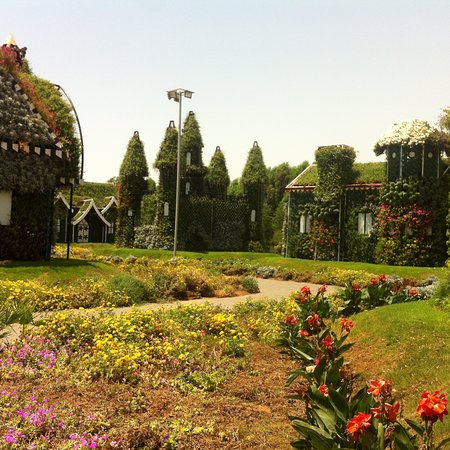 Dubai Miracle Garden: photo4.jpg