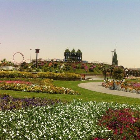 Dubai Miracle Garden: photo5.jpg